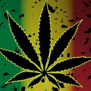 Ultimate Ganja Lover's Guide