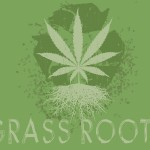 Supercharge Your Marijuana Roots