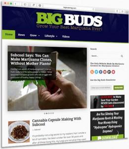 Big Buds Mag