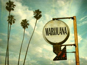 Marijuana Legalization California