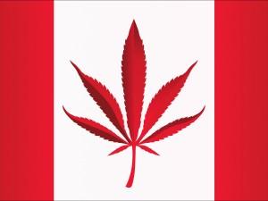 Canadian marijuana legalization