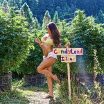 Marijuana Porn: NSFW Hot 420 Girls & Buds Photos & Videos