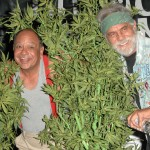 Tommy Chong Backs Bernie Sanders for President