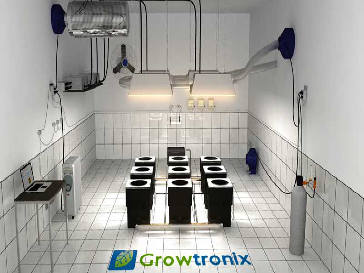 marijuana grow room