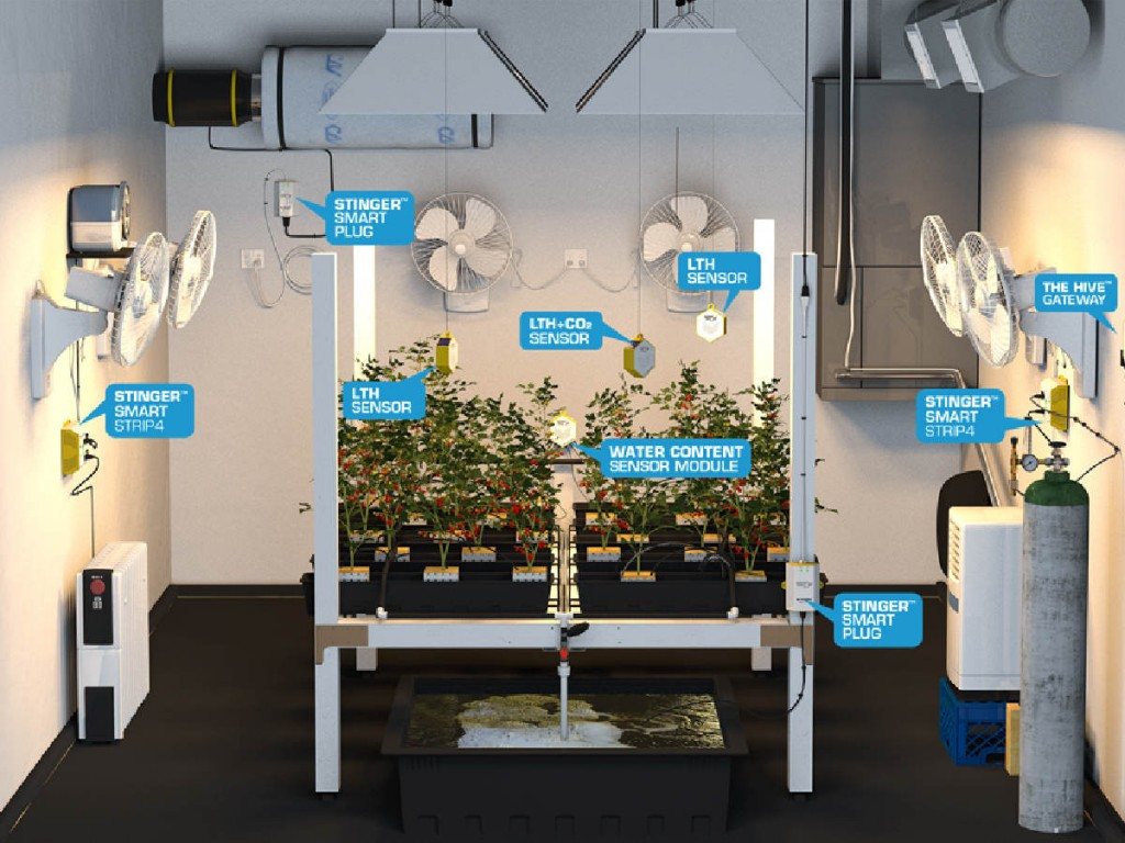 marijuana grow room controllers