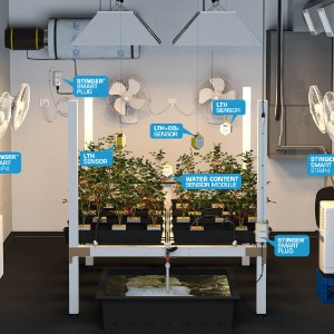 marijuana grow room controllers