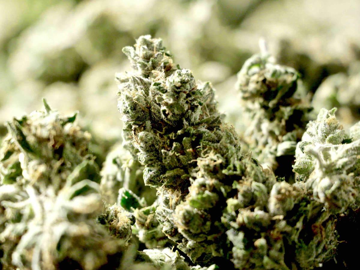 adult use of marijuana act: california