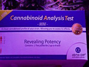 testing marijuana