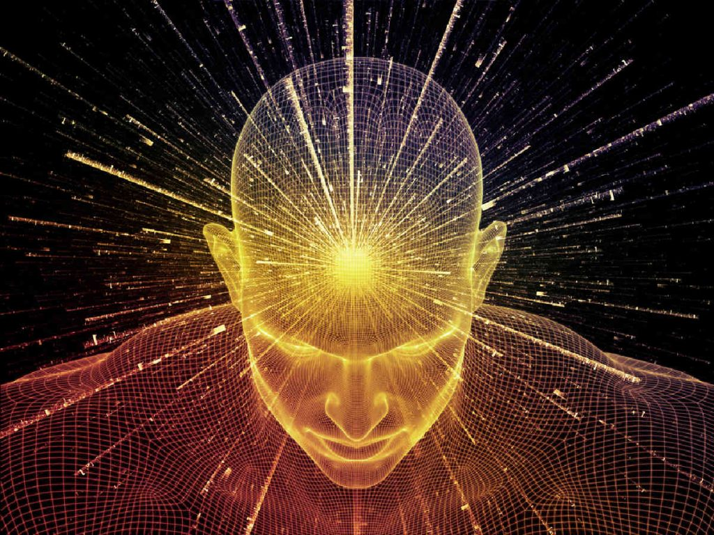 plant consciousness