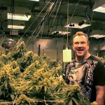 Hydroponics Nutrients Pioneer's 3+ Pounds Per Light Marijuana Grow Room Videos