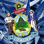 Recreational Maine Marijuana Legalization Celebrated by Maine Marijuana Growers