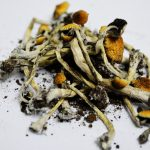 Marijuana and Magic Mushrooms: Safest Drugs