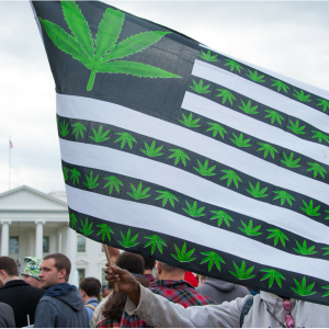 Jeff Sessions Continues His Stupid War Against Recreational & Medical Marijuana