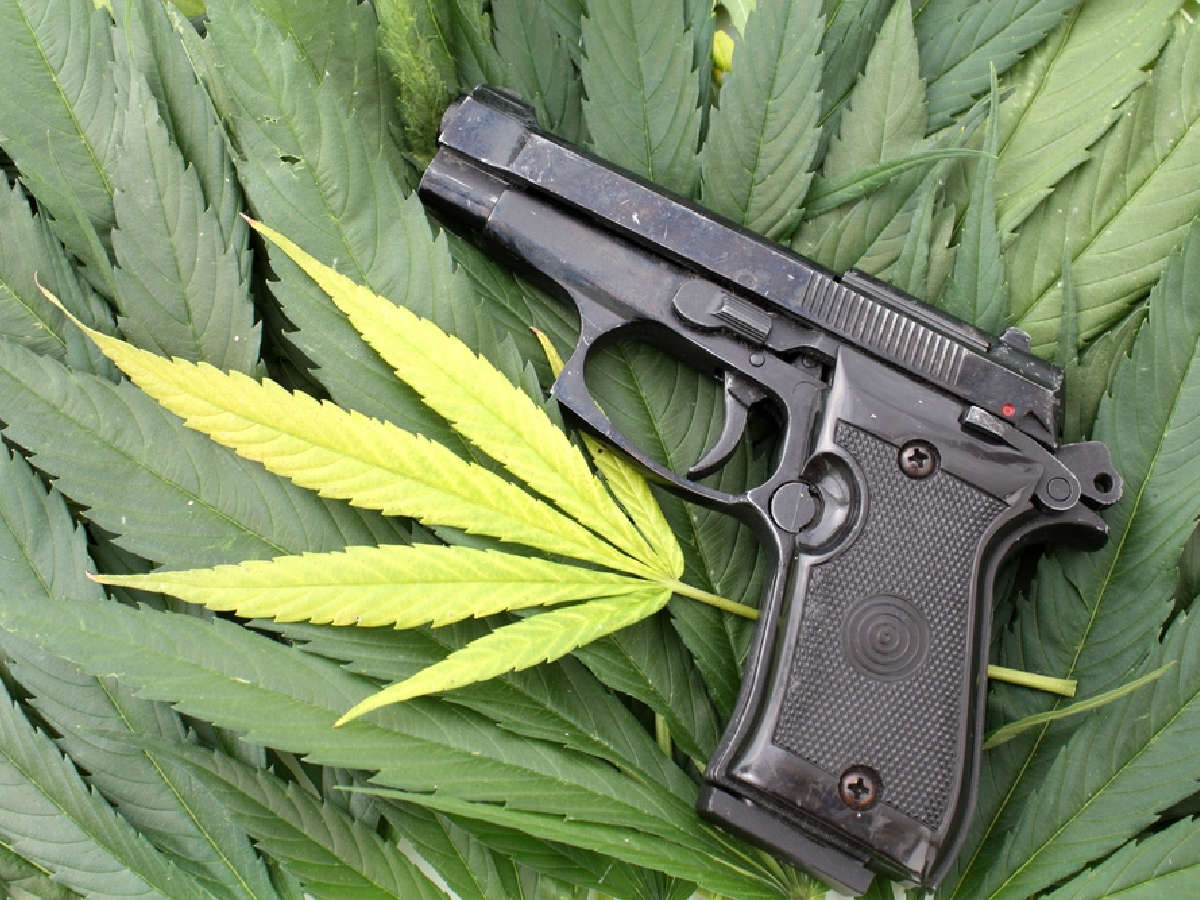 Hawaiian medical marijuana