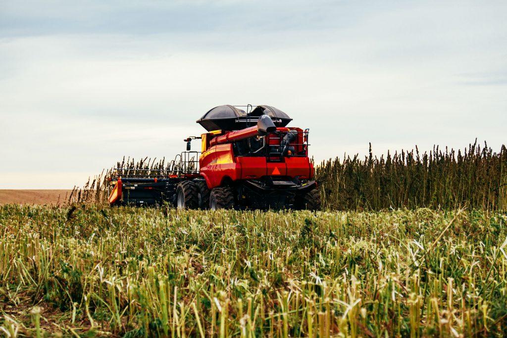 combine_harvesting_hemp_agriculture