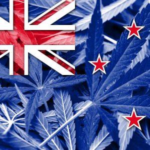 NZ cannabis legalization