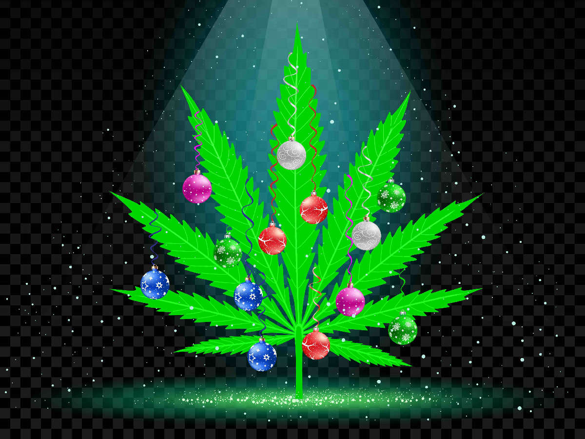 Christmas tree cannabis