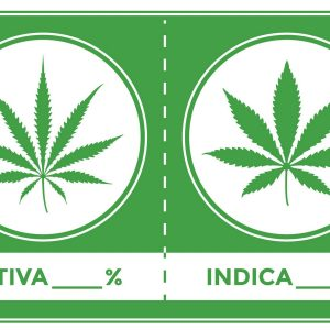 indica_sativa_cannabis_marketing.jpg