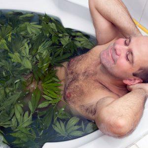 taking_a_bath_in_cannabis_grow_house