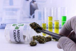medical_cannabis_potency_testing