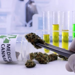 medical_cannabis_potency_testing