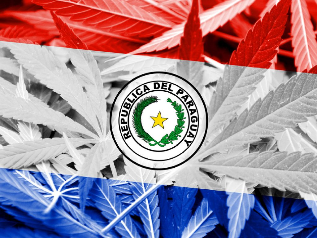 Paraguay Medical Marijuana Bill