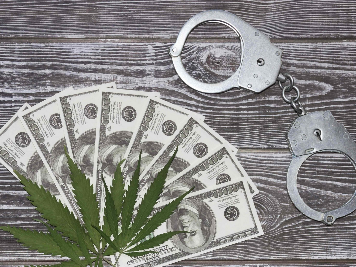 cannabis_arrests_on_the_rise.jpg
