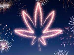 New Year Resolutions For Cannabis Growers