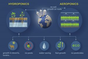 hydropoinc_and_aeroponic_growing