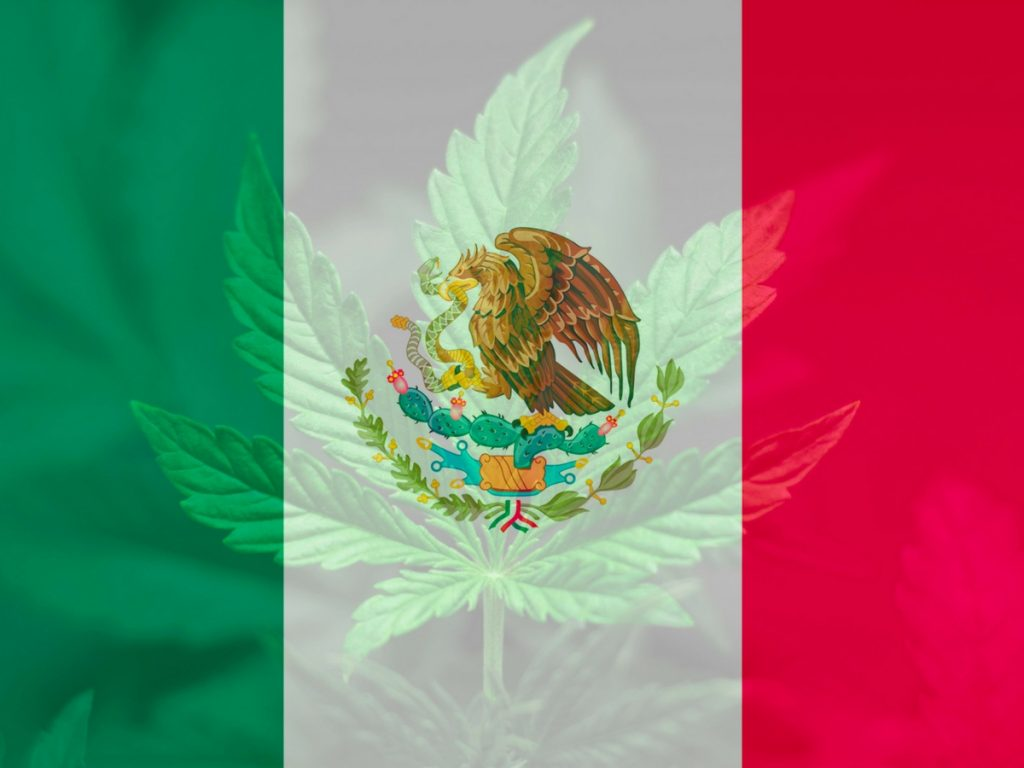 Mexico_legal_cannabis_products