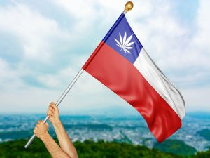 chile-medical-marijuana-and-cultivation-policies