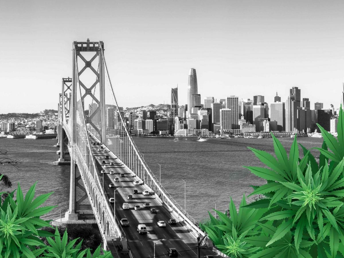 cannabis sanctuary cities