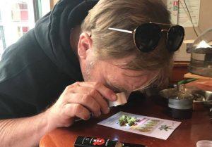 Amsterdam cannabis