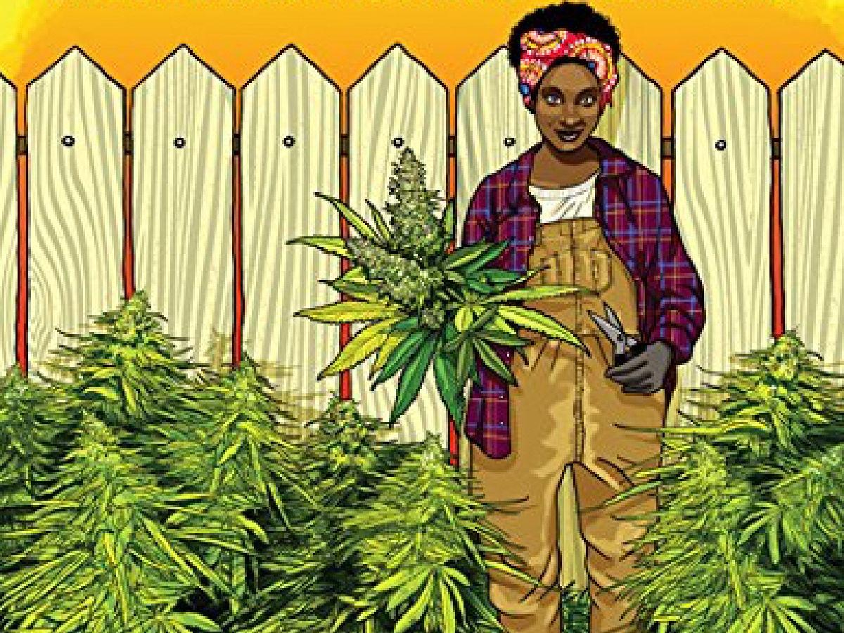 feminist cannabis