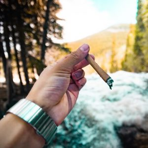 Tim Maly, a.k.a @stonedtim, made a big impact on YouTube — before the video-sharing service nixed many YouTube accounts featuring cannabis. (Image courtesy of Instagram)