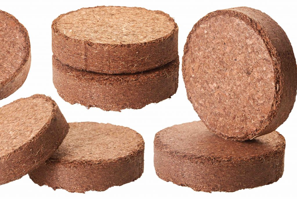 Coco coir can be processed and compressed into small discs for planting and watering.
