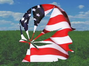 VA and marijuana
