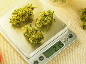 cannabis cost