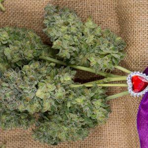 weed wedding