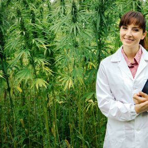 oregon-cannabis-association-for-female-cannabis-entrepreneurs