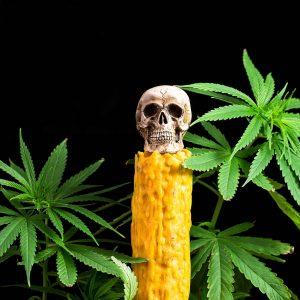 Halloween and cannabis