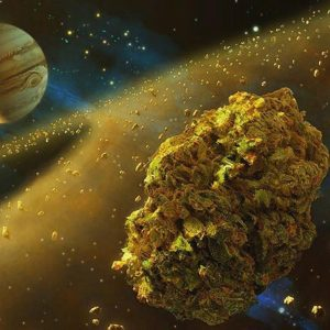 Cannabis in space