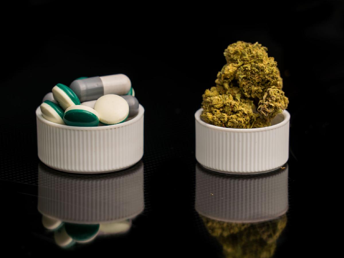 Cannabis Opioids
