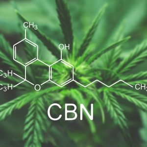 Cannabis CBN