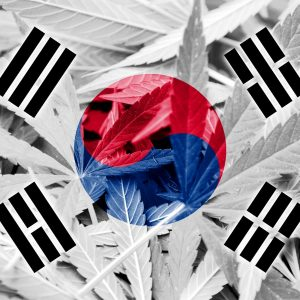 South Korea Cannabis