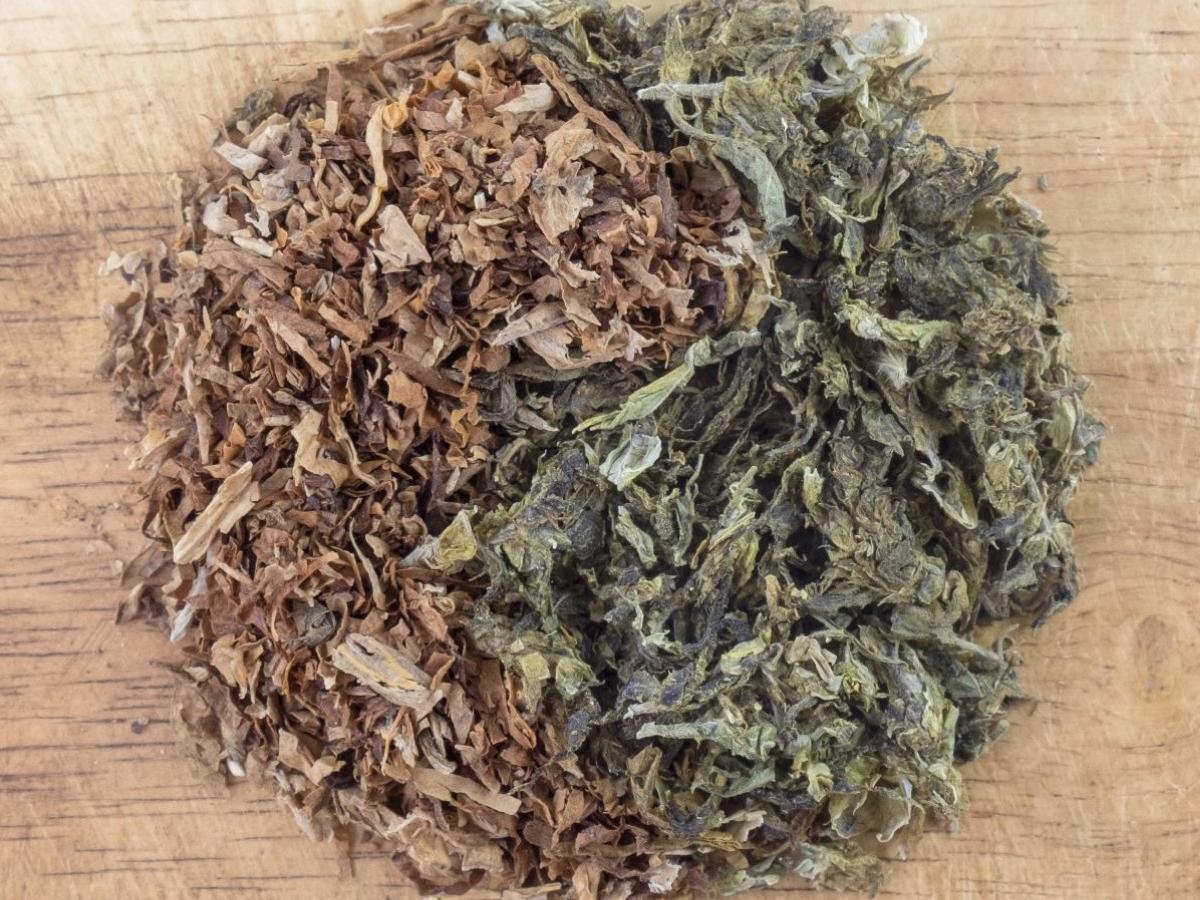 tobacco_cannabis_farmers