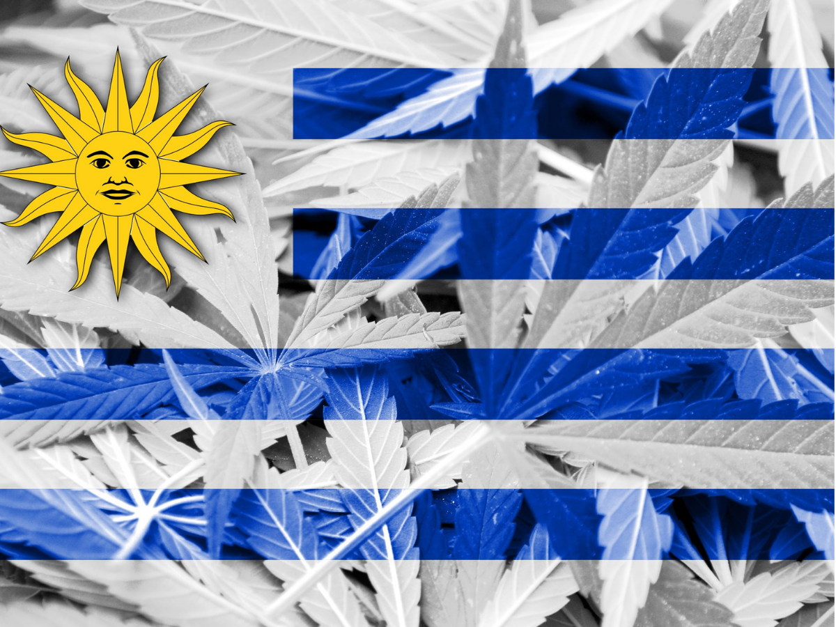 Uruguay legalized cannabis