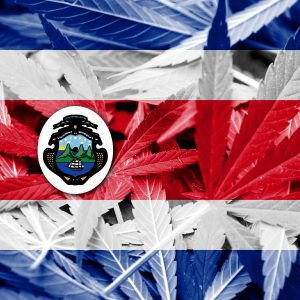 cannabis Costa Rica