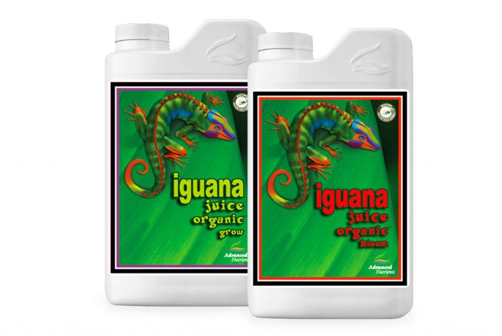 Iguana_Juice