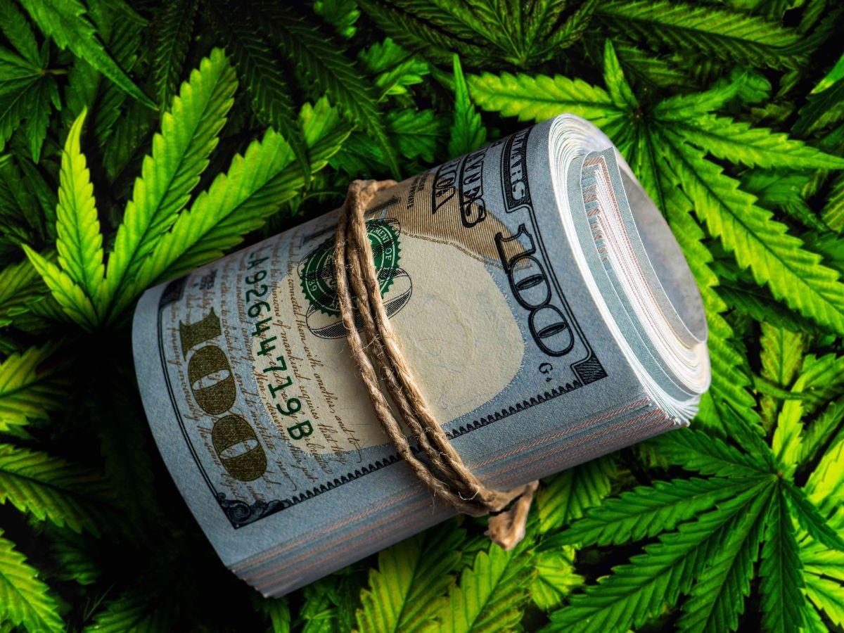 black market weed